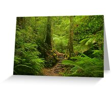 Magic Rainforest Greeting Card