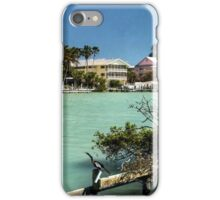 Tropical Colors iPhone Case/Skin