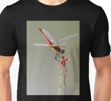Dragonfly Hover Unisex T-Shirt