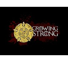 Growing Strong - House Tyrell Photographic Print