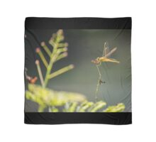 Golden Dragonfly & Friend Scarf