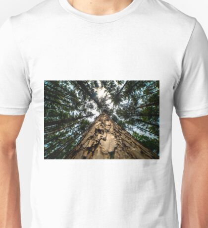 Looking Up at Giants Unisex T-Shirt