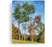 Tall Trees Against A Blue Sky Canvas Print