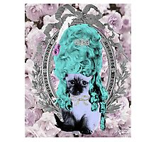 Mozart and Marie Miss Princess Kitty Photographic Print