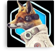 ~ Star Fox ~  Canvas Print