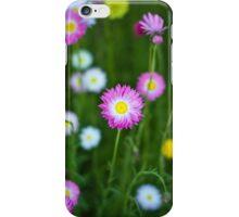 Everlastings in Kings Park iPhone Case/Skin