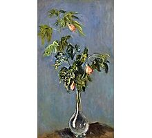 Claude Monet - Flowers In A Vase 1888  Photographic Print