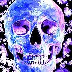 sky skull by John Ryan