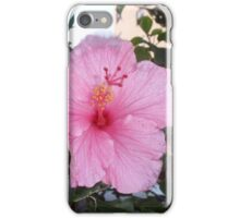 Springs Pink Delight iPhone Case/Skin