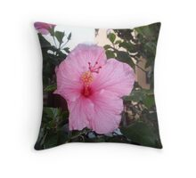 Springs Pink Delight Throw Pillow