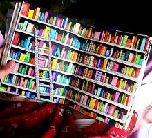Unlimited Books Library Design by LittleMizMagic