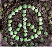~ Peas on Earth ~ Photographic Print