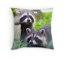 Raccoon Babies Throw Pillow