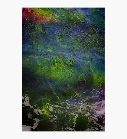 Sea Grass Abstract Photographic Print