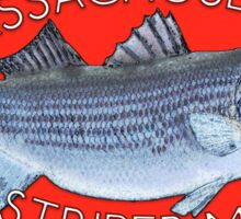 Striper Fishing - Massachusetts Striper Madness (Red) Sticker
