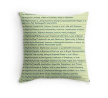 Freedom Rights Throw Pillow