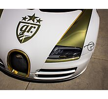 Gold Plated Bug  Photographic Print