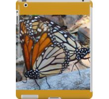 Monarch Squared iPad Case/Skin