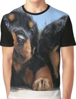 Two Rottweiler Puppies, High Five Graphic T-Shirt