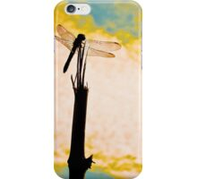 King Dragonfly Ouranós iPhone Case/Skin