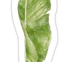 leaf of palm Sticker
