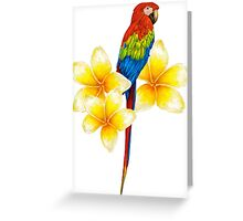parrot sitting on a branch with tropical flowers Greeting Card