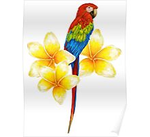 parrot sitting on a branch with tropical flowers Poster