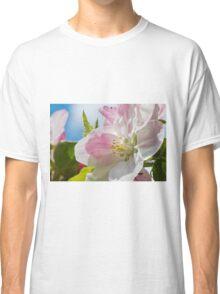 Beautiful Spring Apple Blossom Classic T-Shirt