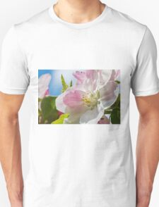 Beautiful Spring Apple Blossom Unisex T-Shirt