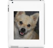 WONDERFUL CARMEN iPad Case/Skin