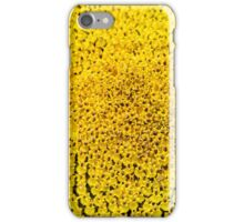 Sunflower macro in summer iPhone Case/Skin