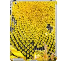 Sunflower picked and ripe iPad Case/Skin