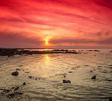 Skerries Shoreline  by Martina Fagan