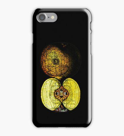 newton's infinite fruit of cosmic indolence iPhone Case/Skin
