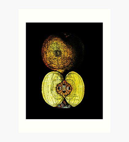 newton's infinite fruit of cosmic indolence Art Print