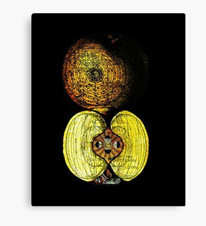 newton's infinite fruit of cosmic indolence Canvas Print