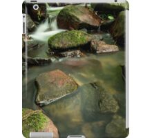 Kilfane Glen iPad Case/Skin