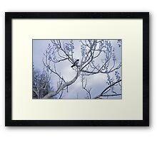 Powder Blue Framed Print