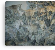 Bison Skull Collection, Head-Smashed-in Buffalo Jump, Alberta, Canada Canvas Print