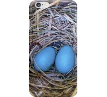 A Perfect Pair iPhone Case/Skin