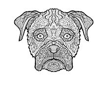 Boxer Dog - Detailed Dogs - Illustration Photographic Print