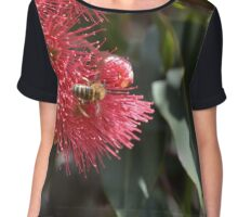 Red flowering gum tree Chiffon Top