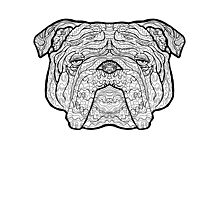British Bulldog - Detailed Dogs - Illustration Photographic Print