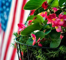 Summer in America by KellyHeaton