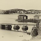 Notre Dame Bay - sepia by PhotosByHealy