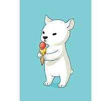 Polar Ice Cream Photographic Print