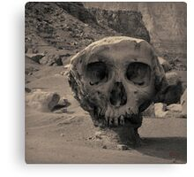 Valley of the Skulls I Toned Canvas Print