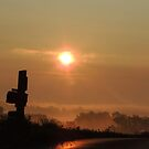 Mailbox in the Morning  by TrendleEllwood