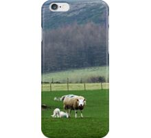 Sheep & Lambs iPhone Case/Skin