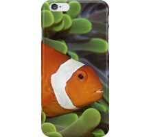 Nemos Home II iPhone Case/Skin